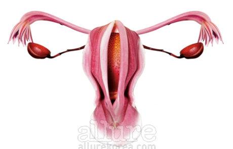 자궁의 신호