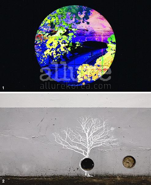 1. 우주의 빅뱅을 주제로 한 대상작 2. 담벼락에 회화적인 그림을 그린 2등작