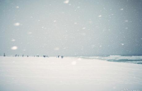 겨울, 그곳으로 갔다