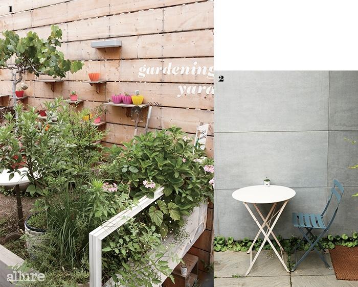 1 받침대, 물뿌리개, 삽 하나까지 패셔너블한 모제인송의 텃밭 2 카페 구석구석에서 자라나는 녹색잎을 만날 수 있다