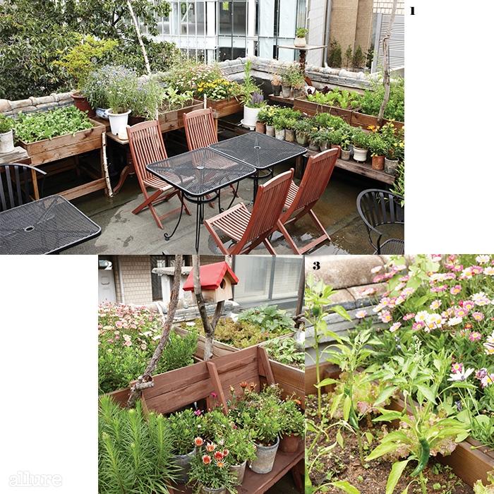 1 너른 테이블이 마련되어 있어 간단히 차를 즐기거나 대기하는 시간에도 이용할 수 있는 에이블의 옥상. 2 옥상을 가득 채우고 있는 꽃과 채소들 3 수확을 기다리는 잘 자란 고추