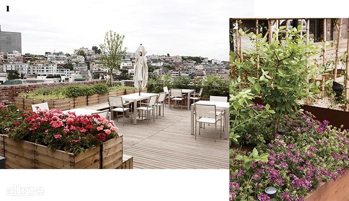 1 남산이 한눈에 보이는 옥상 정원. 테이블 양쪽으로 수십 종의 다양한 식물을 만날 수 있다 2 식재료는 물론 계절에 맞는 꽃도 다양하게 키운다