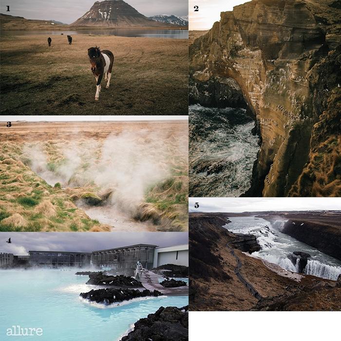 1 고속도로변의 들판 어디에서나 마주치는 아이슬란드의 조랑말들. 2 아이슬란드에서만 사는 새, 페핀이 그륀다르피오르뒤르(Grundarfjrdur)의 절벽에 모여 있다. 3 들판 밑을 흐르는 뜨거운 지하수에서 올라오는 수증기. 4 골든 서클 중 하나인 귀들포스(Gullfoss) 폭포. 나이아가라 폭포와 종종 비교된다. 5 블루 라군의 스파건물과 야외 온천.