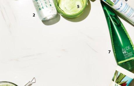 여름의 특효약, 알로에 사용 설명서
