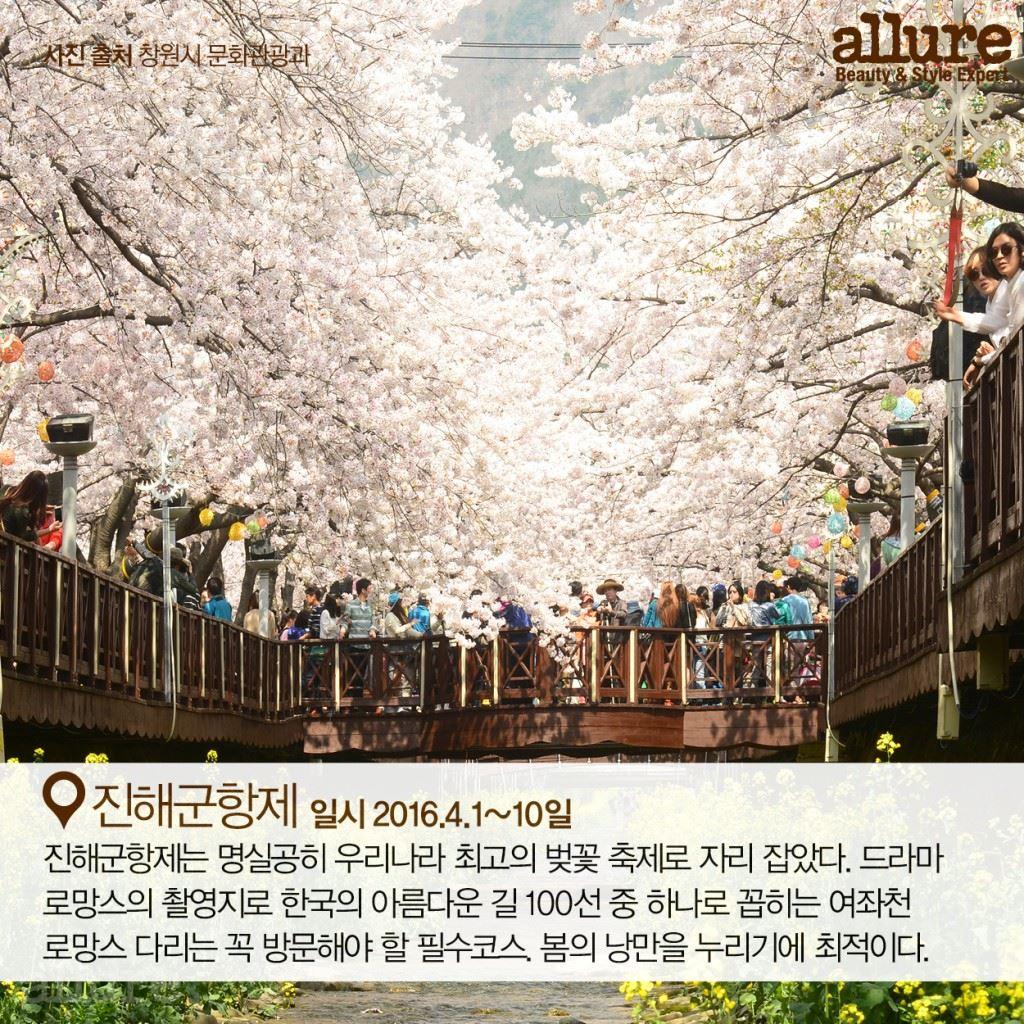 봄 바람 타고 가는 꽃 축제3