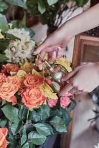 살짝 물을 뿌려서 꽃에 생기를 더한다.