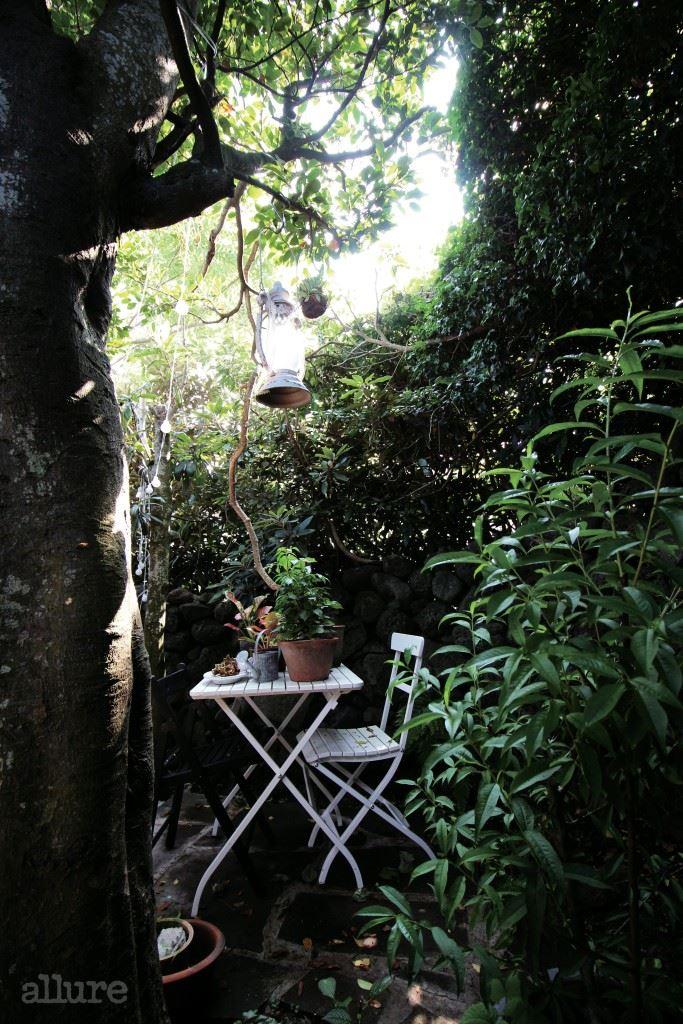 비밀의 정원.