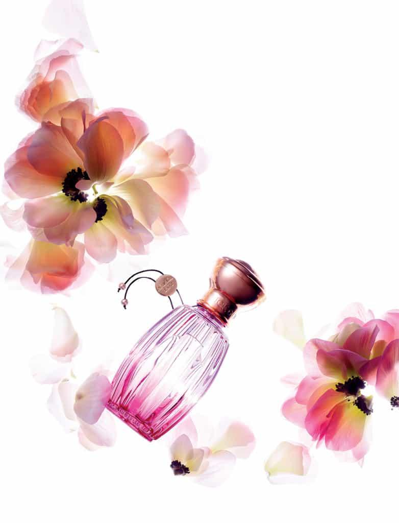 아닉 구딸의 로즈 폼퐁 오드 퍼퓸. 핑크빛 로제 샴페인처럼 상큼하면서도 벨벳처럼 부드러운 꽃향을 지녔다. 50ml 10만원대.
