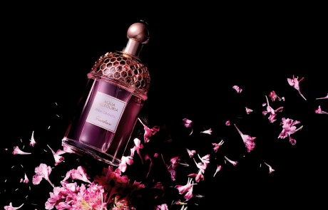 봄날의 향기