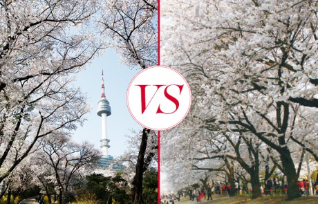 남산 vs. 여의도