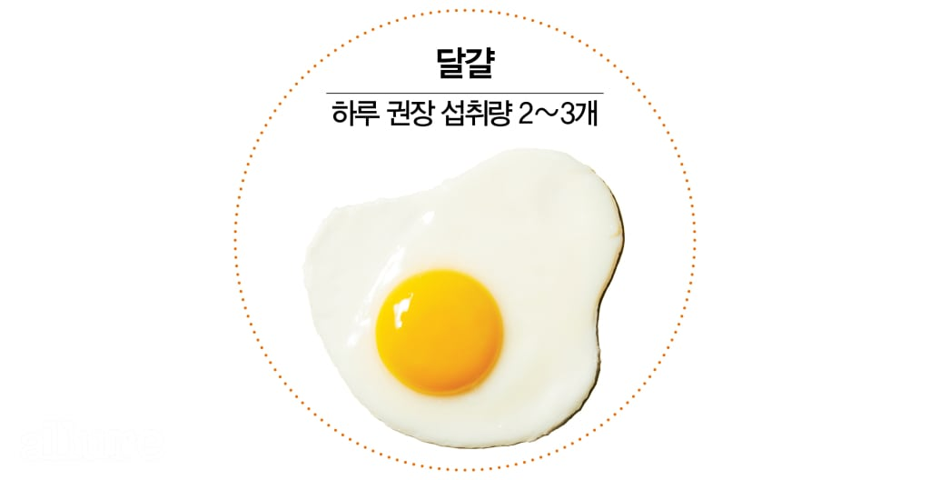 074 달걀이너무해2