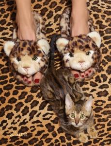 인조 퍼 뮬과 세련된 레드 컬러로 발톱을 물들인 네일 라커는 돌체앤가바나(Dolce&Gabbana).