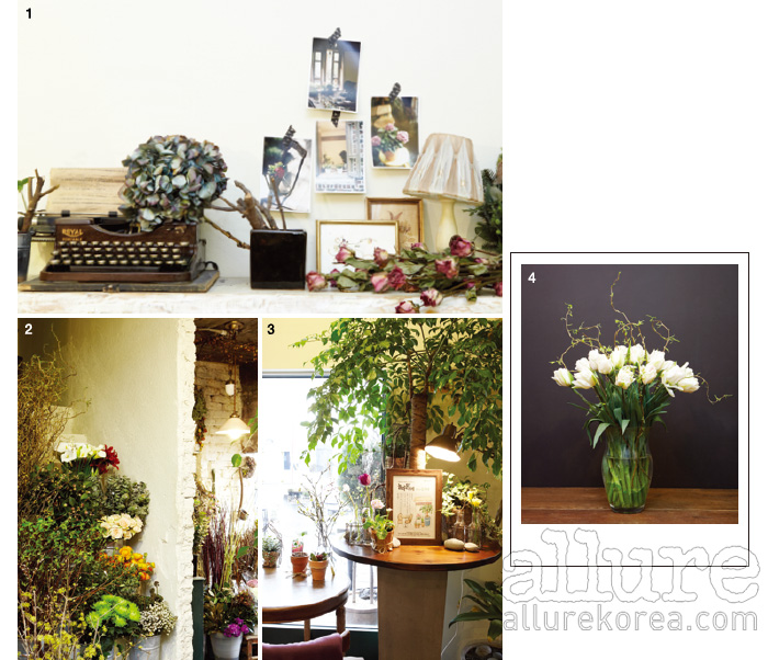 1. 오래된 타자기와 액자, 말린 꽃이 놓인 선반. 2. 안쪽에 자리한 플라워 숍은 발 디딜 틈도 없이 화사한 꽃으로 가득 차 있다. 3. 커다란 화분과 작은 화분들이 보기 좋게 자리 잡았다.4. 블뤼테가 추천하는 봄의 꽃, 튤립