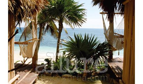 파파야 플라야 프로젝트가 자리한 툴룸의 아름다운 해변