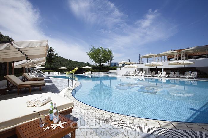 남산의 풍경이 그대로 보이는 신라 호텔 수영장