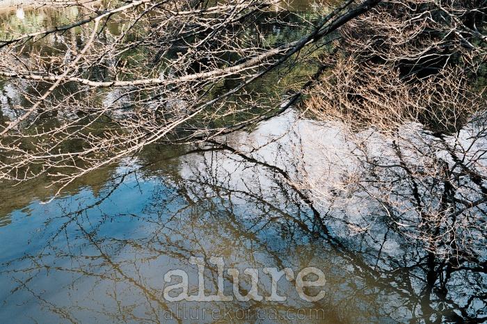 일본 아오모리아오모리현 도와다 호숫가의 오후 3시. 이 아름다운 칼데라호의 봄은 천천히 찾아온다.삼월 중순인데도 벚나무엔 꽃망울만 살짝 맺혀 있다. 이곳에서 사랑하는 사람과폴라리스의 '계절'을 들었다. 밤이 올 때까지 그곳에 앉아 있었다. - 모레(사진가)