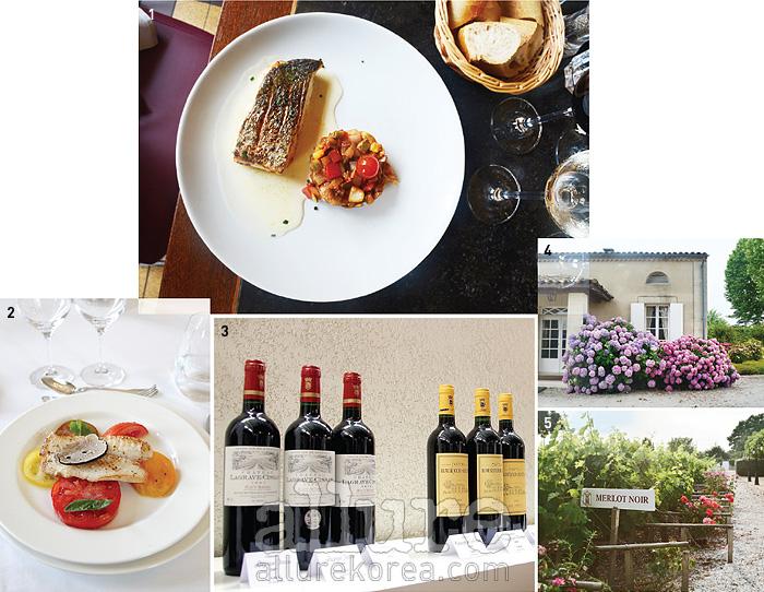 1 카페 라비날의 생선 요리. 라타투이를 곁들였다. 2 그랑 크뤼 2등급인 샤토 피숑 롱그빌의 성에서 프라이빗한 정찬을 즐길 수 있다. 3 메독 와인생산자 조합에서 생산하는 와인들. 4 아름답게 꾸며진 린슈 바주 와이너리. 5 품종별 포도를 심어 놓은 코르데이양 바주의 정원.
