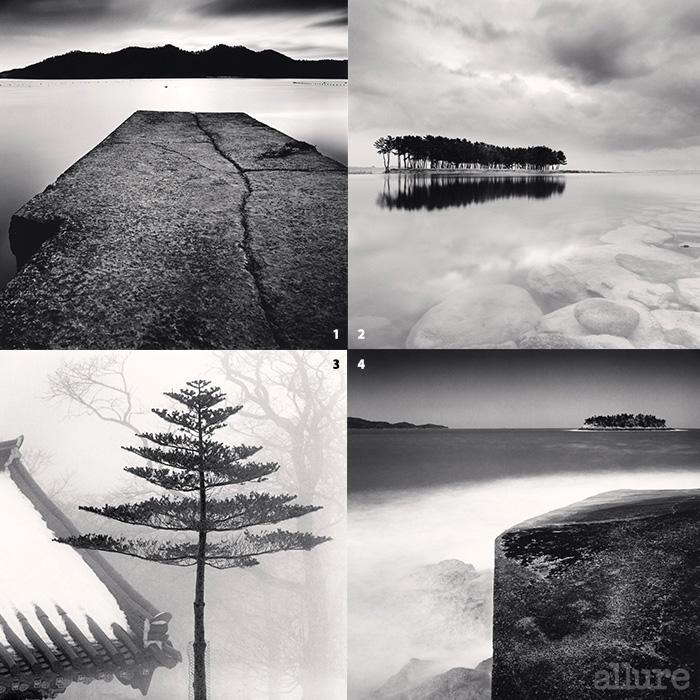 1 Cracked Pier, Haeuido. Shinan 2 Pine Trees, Study 3, Wolcheon, Gangwondo 3 Temple Tree Jonjaanji, Jeju Island 4 End of Pier Jeungdo, Shinan