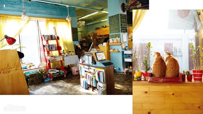 1 생활과 시간이누적된 꿈꾸는 타자기의내부. 가정집을 개조한 조용한공간에 5천여 권의 책이 쌓여있다. 2 창가를 좋아하는하루키와 오스터.