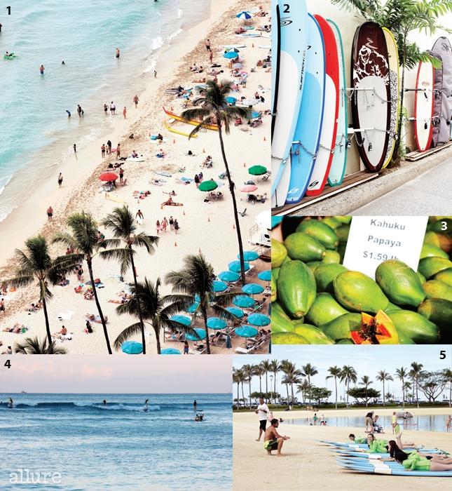 1 하얏트 리젠시 와이키키에서 내려다본 와이키키 해변. 2 서핑이 없는 하와이는 상상할 수 없다.하와이 곳곳에서 서핑보드를 볼 수 있다. 3 하와이산 파파야. 4 서퍼들은 해가 질 무렵의 서핑을 좋아한다.5 에롤과의 서핑 수업. 초보자들도 반나절이면 서핑을 배울 수 있다.