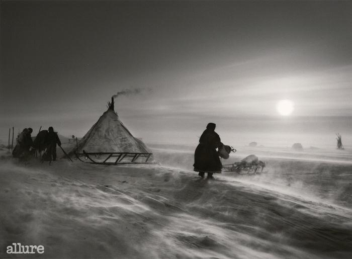 날씨가 아주 나쁠 때 네네츠 족과 순록은 한곳에 며칠씩 머문다. 북극권 안 야말 반도. 러시아. 2011